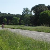 Passejant en bicicleta pel pla de Banyeres